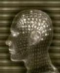 En cerebro y neurociencias la Universidad de Bonn ha demostrado que en el cerebro la transmisión de datos de una neurona a otra no solo se desarrolla en la sinapsis